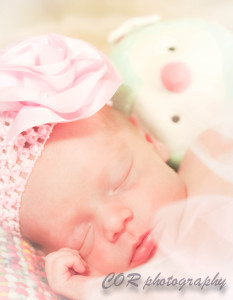 Scarlett Nov 2014-19